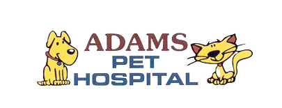 Adams Pet Hospital