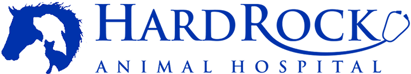 Hard Rock Animal Hospital