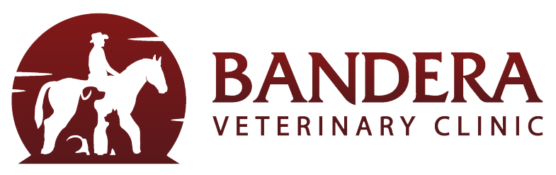 Bandera Veterinary Clinic