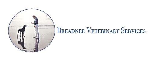 Breadner Veterinary Services