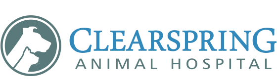 Logo for Veterinarians Steinbach, Manitoba | Clearspring Animal Hospital