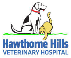 Logo for Seattle, WA Veterinarians Veterinary Hospital | Hawthorne Hills Veterinary Hospital Seattle