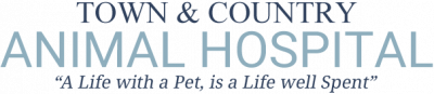 Town and Country Animal Hospital in Stouffville