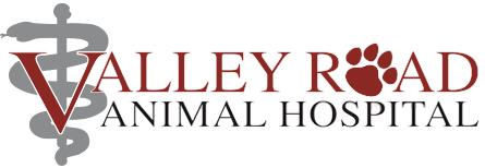 Logo for Veterinarians Enola | Valley Road Animal Hospital