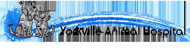 Logo for Yorkville Animal Hospital | Your local veterinarian in Toronto, Ontario